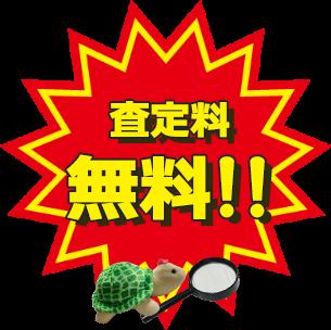 査定料無料!!